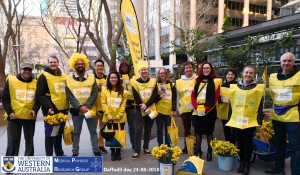 Daffodil Day 2018
